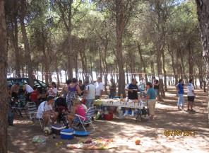 Convivencia Educar-T 2011 Imagen 4